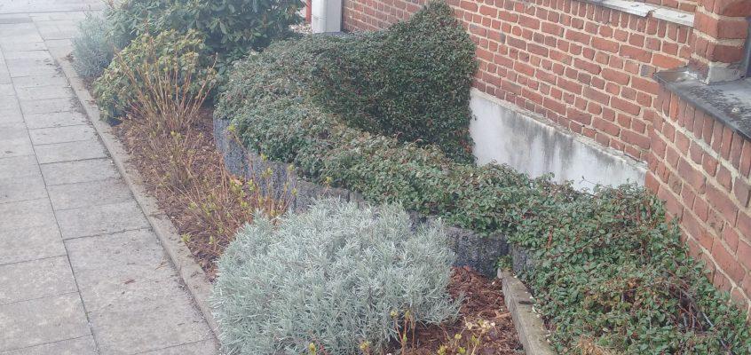 Gartenpflege – Beetanlage für die neue Saison fit machen