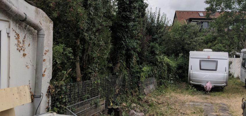 Hausmeisterservice – Gartenpflege – Baum- und Strauchüberwuchs am Grenzzaun einkürzen